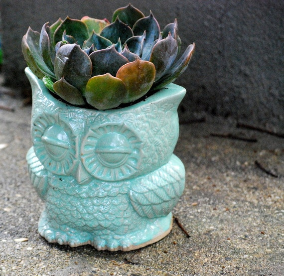 indoor owl Planter pencil holder desk vase in mint  vintage style   home decor