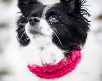 Small Puppy Circle Scarf / Pet Scarf