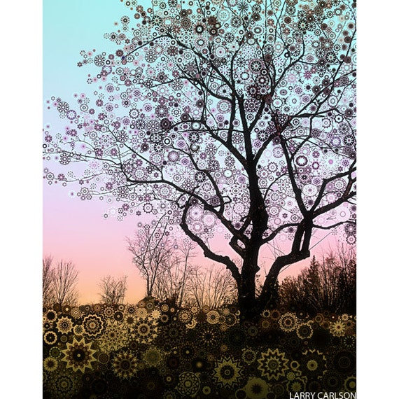 Winter Star Tree 2 ... sunset, a bare apple tree and turquoise sky fine art print