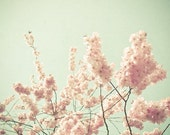 In All It's Glory - Nature photograph, blossom tree, pastel colors, pastel pink and mint green, bedroom wall decor