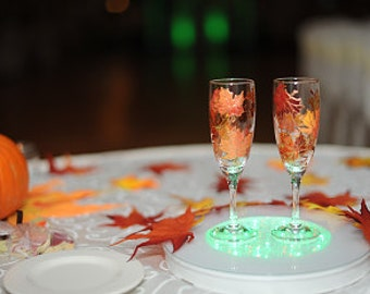 1 Hand painted Wedding Toasting Glass, Personalized Champagne glasses Autumn leaves