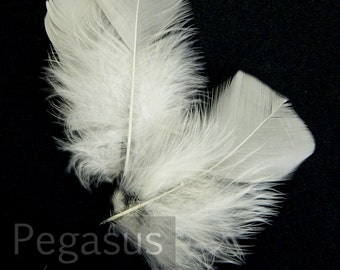 WHITE Turkey feathers (Loose)(24 Pieces) Turkey flat feathers for wedding bouquet, shoe clip,  fascinators, boutonniere, earrings