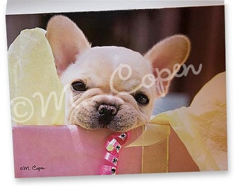 French Bulldog Celebration Note Card w/Swarovski Crystals Rhinestones