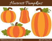 Harvest Pumpkins Clipart - Digital Clip Art Graphics for Personal or Commercial Use