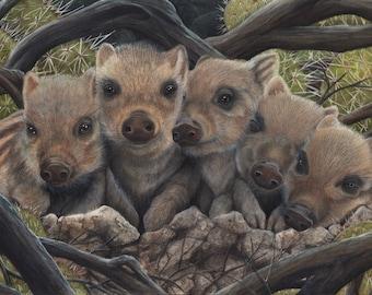 Hidden in the Brush  - 8x10 Fine Art Print - Baby Boar