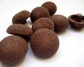 Vintage Chocolate Brown Shank Buttons UNUSED Set of 10
