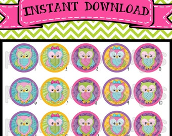 "Funky Owls - INSTANT DOWNLOAD 1"" Bottle Cap Images 4x6 - 422"