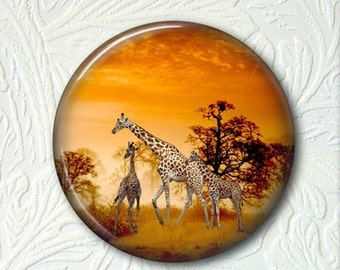 Pocket Mirror Giraffes Buy 3 Get 1 Free 148