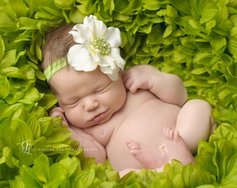 newborn headband, Ivory Flower Headband, green head band