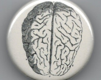 Brain 1.25 inch Pin back BUTTON Vintage Image