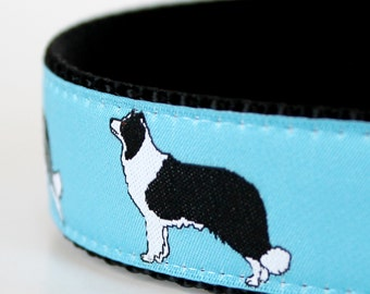 Border Collie Dog Collar  / 1 inch width / Last One