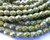 50 Czech Glass Fire Polish  in  a Mustard Snake Beads in size 6mm Round
