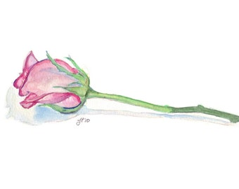 Rose Watercolor Painting - Single Pink Rose Original Watercolor Painting, Matted to 11x14