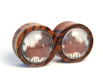 1 inch Butterfly Wing and Zebra Wood Plugs Pre-Made ON SALE - Gauges Stretchers Body Jewelry