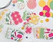 Craft Kit Scrapbook paper embellishments button ribbon gardening theme