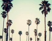 California Photography- Palm Trees, Retro, Urban Decor , Palm Art, Summer,  California Art, Palm Tree Print, Seagreen, Ombre