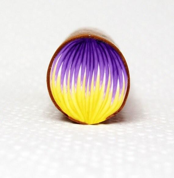 Purple Yellow Polymer clay PETAL cane