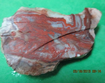 Crazy Lace Agate Cabbing - Slab Red,White, Gray Rough Lapidary End Cut Free Form Wrap It