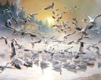 Gulls, cabin, mist, original 36x48 oils on canvas painting by RUSTY RUST / G-27