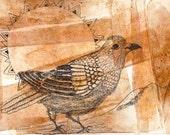 Medicine Bird, Tribal Aura, Bird Mandala, Alter Art, Bird Totem, Greeting Card or Photographic Art Print