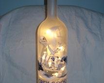 Grey Goose Vodka Bottle Light
