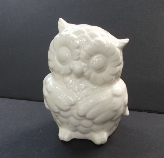 Ceramic Owl Bank Piggy Bank Glazed White By Strokesofmadness
