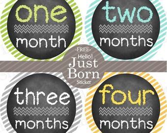FREE Baby Monthly Bodysuit Sticker NEUTRAL Monthly Stickers Boy Girl Baby Month Milestone Sticker Newborn Photo Props Chaklboard Chevron
