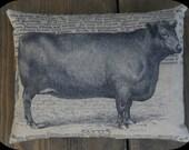 Bull Feed Sack Pillow
