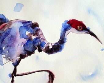 Sandhill Crane Original Watercolor Bird Art Print