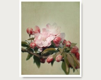 Pink flower print Spring Blossom Photo, Flower Photo, fine art print, pink and green, flowers, olive, tree, blossoms, floral valentines day