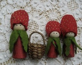 Strawberry family