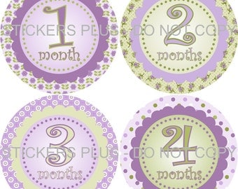 Baby Girl Month Stickers Monthly Baby Bodysuit Milestone Stickers Lilac Purple Green Cream Dots Scallops Flowers Dots 1-12 or 13-24 Months