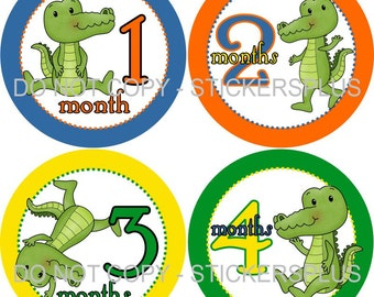 Baby Month Stickers Monthly Baby Milestone Stickers PRECUT Bodysuit Monthly Stickers Plus FREE Gift Boy Cute Alligator Gator Nursery Gift