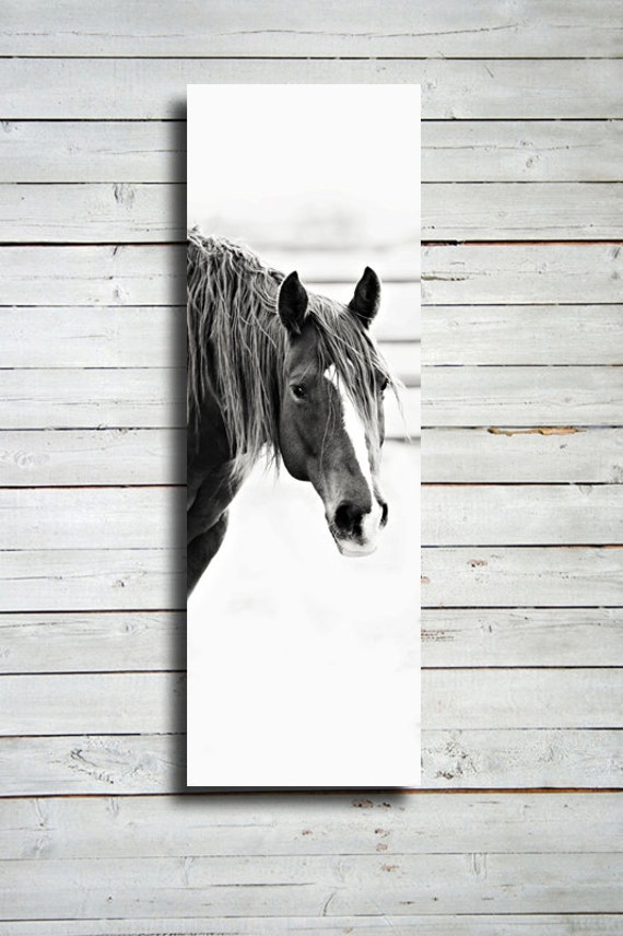 """Looking - 20x60"""" print - Horse photography - Black and White horse photography - Horse decor - Horse photography - Horse art"""