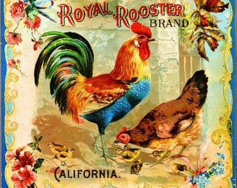 Riverside Royal Rooster Chicken Chickens Orange Citrus Fruit Crate Box Label Art Print