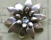 Brass daisy with bezel, multi layered, Sterling Silver Finish