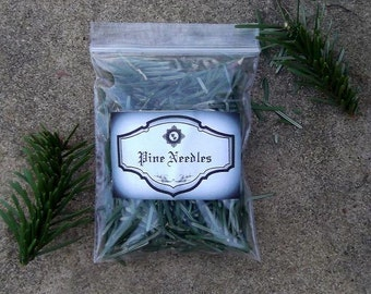Pine Needles: Witchcraft, Magic, Wicca, Sorcery