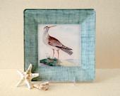 Seashore Bird Art / Beach Decor / Decoupage Plate / Wall Hanging / Bird Print / Coastal / nautical decor beach cottage art