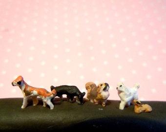 Super tiny dogs set X.