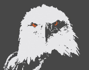 Eagle - Counted Cross Stitch Kit - 'You looking at me'