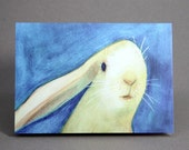 Pack of 8 Rabbit Greeting Cards