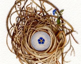 forget me not nest original watercolor art OOAK