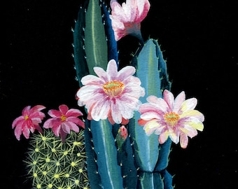 Night cactus garden - illustration - giclee print
