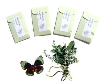 Sachets Rosemary Mint Small Presents for Guests Creative DIY for Spring Wedding Favors Bachelorette Event Party Green Pastel Plant Inspired