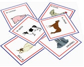 Animals - Laminated French Flashcards with Pronunciation on a CD