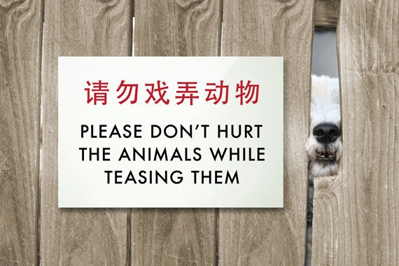 Novelty Animal Sign Funny Chinglish Signage For Dogs Cats