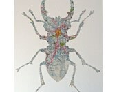 A Mexican Beetle - handcut & made from a vintage 1960s map of Mexico