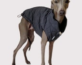 Triple layer lightweight winter coat for Italian Greyhounds