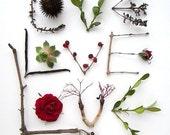 Love photo message. Woodland arrangement 8x10. Garden wedding, valentine, anniversary, birthday print. Simple home decor. Wall art. (e0904)