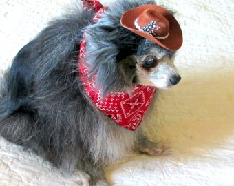 Small Dog's Bandanna and Cowboy Hat Set Pomeranian Yorkie - Red, White & Black Scarf Custom Item Pet Clothes
